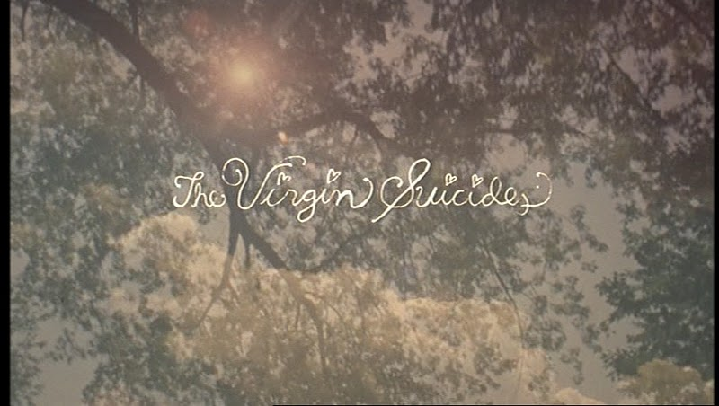 As Virgens Suicidas, Jeffrey Eugenides